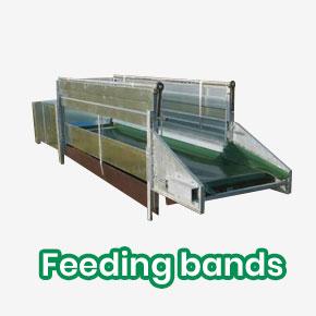 Feeding Bands - Banner3 EN