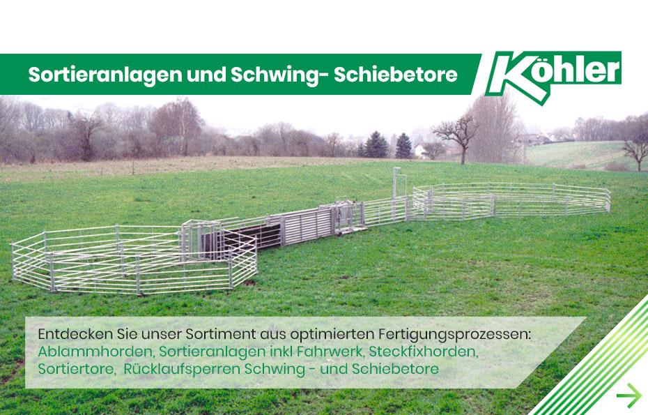 KöhlerSlide2