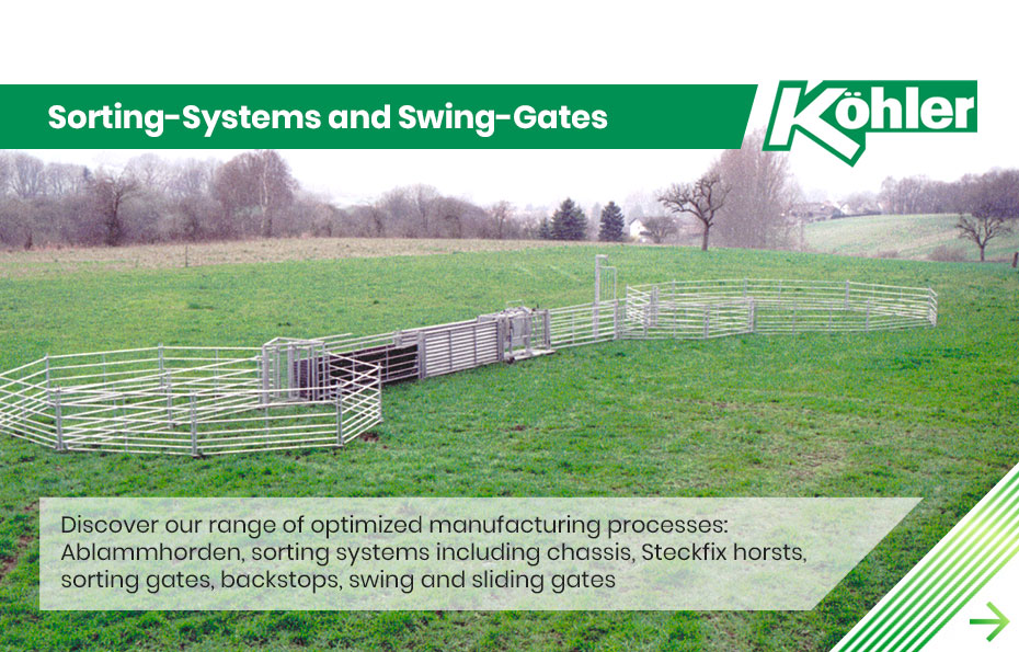 Sortings Systems