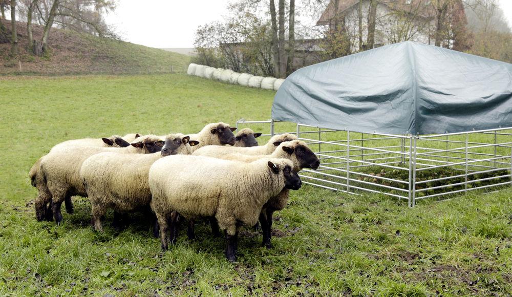 Weideunterstand Komplettset für Schafe und Ziegen