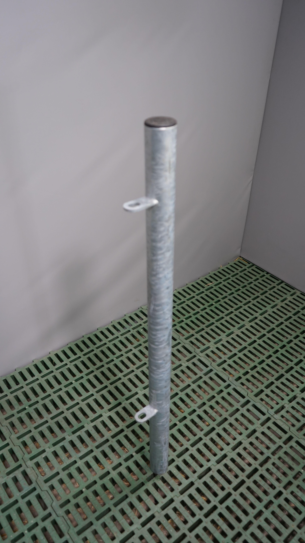 Pfosten Futtertischhorde außen 60 mm zum Einbetonieren
