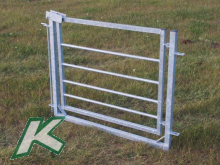 Gate with frame
