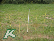 Livestock - Netz 90 cm hoch MIT STARREN SENKRECHTEN, Doppelspitze, 1 Stück